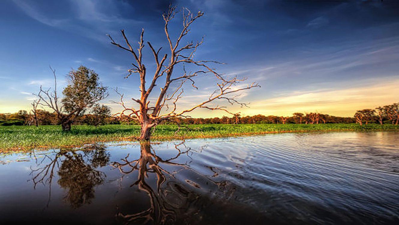 Yellow Water Billabong, Wetlands of Kakadu, North Territory, Australia